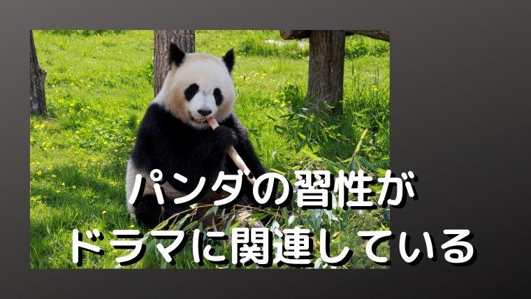 シロクロパンダの第2話考察まとめ