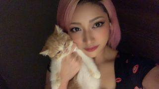 木村花はリスカ写真投稿していた!アンチや嫌いコメントがひどすぎる!