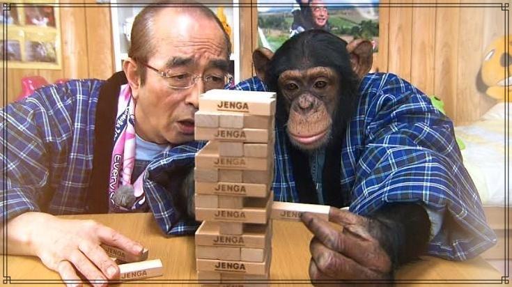 志村 動物園 パン くん 現在