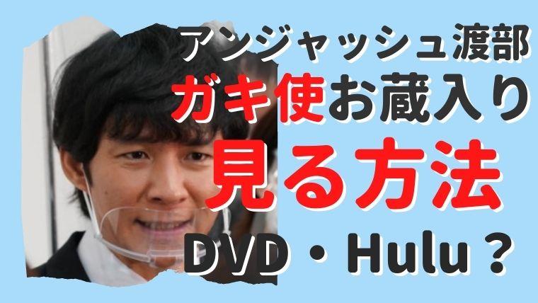 【ガキ使】渡部の出演シーンはDVDやHuluで見られる?お蔵入りだけど見たい!