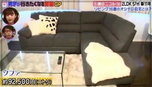 藤田ニコルの自宅マンションのリビング2