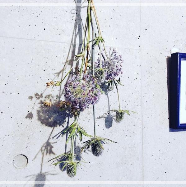 松下洸平さんのInstagramに投稿された花の写真。